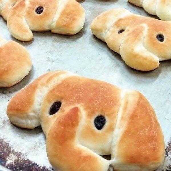 画像1: ぞうさんパン【卵・乳アレルギー対応】 (1)