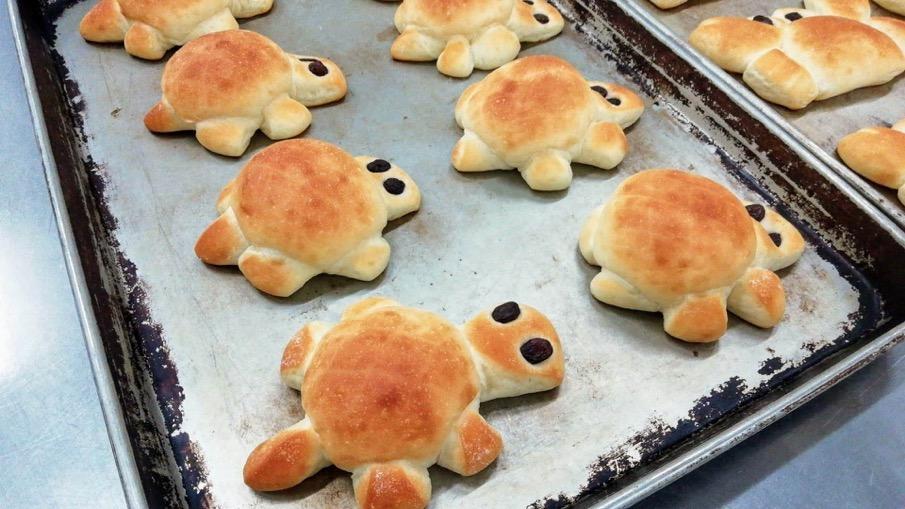 かめさんパン【卵・乳アレルギー対応】